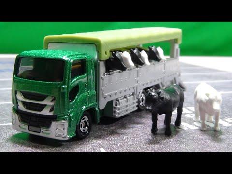 家畜を運ぶトラック ロングタイプトミカ No.139 家畜運搬車 いすゞ ギガ ISUZU GIGA